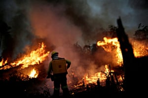 A Brazilian Institute for the Environment and Renewable Natural Resources (IBAMA) fire brigade member attempts to control a fire in a tract of the Amazon jungle in Apui, Amazonas State