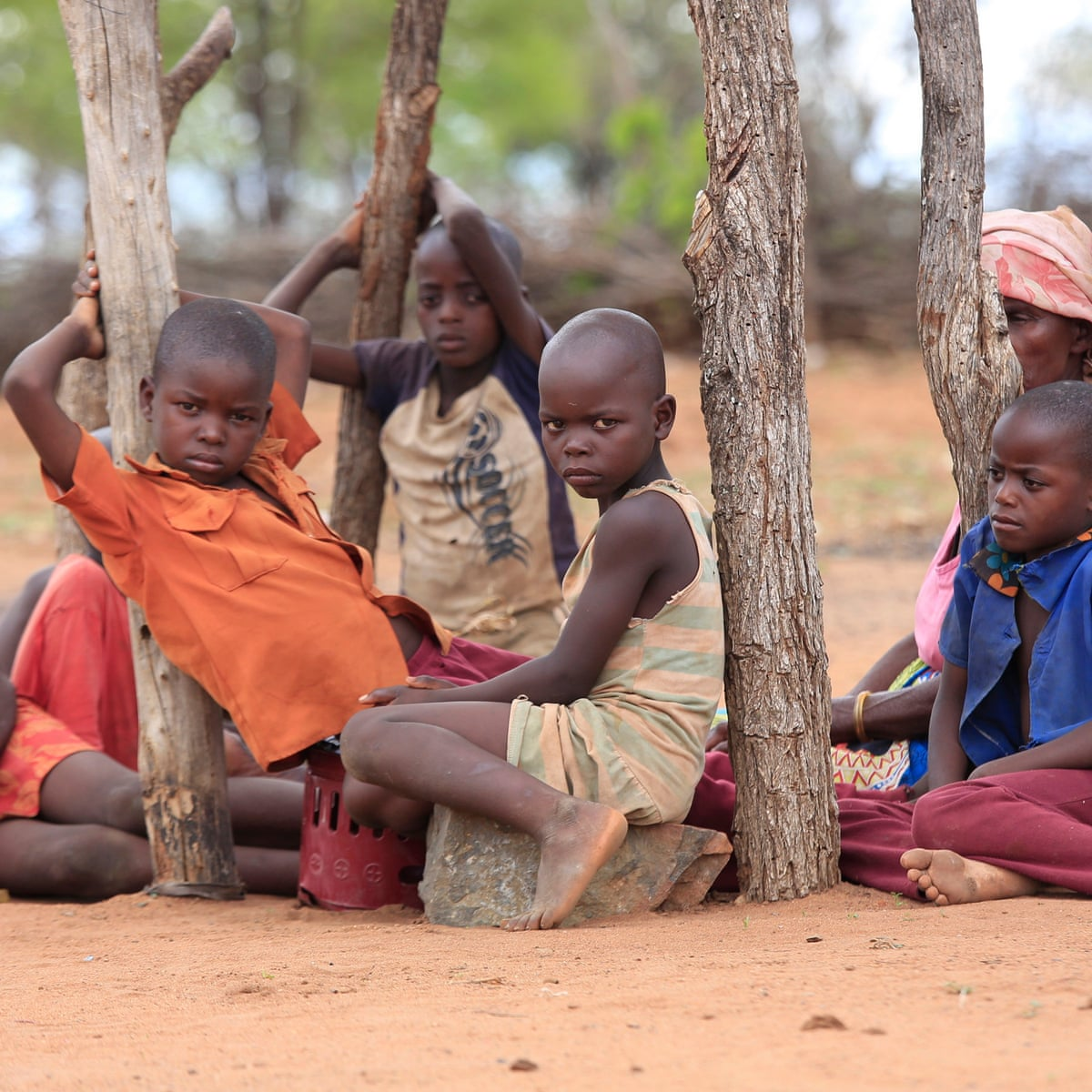 1 And How Many Children Won'T Eat This Christmas 2020 Stats Zimbabwe urged to prioritise children as record poverty causes