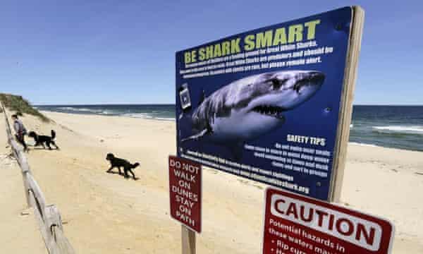 Warnings on a beach in Massachusetts.