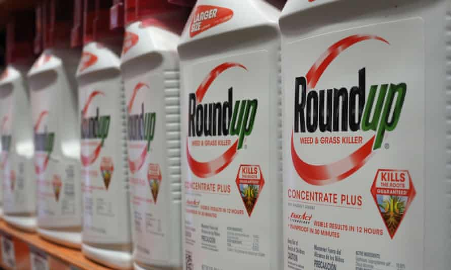 Glyphosate is the key ingredient in Monsanto's Roundup weed killers.