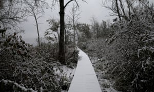 Snow covers a path in Kingston, New York, as the first wintry weather arrives in the US