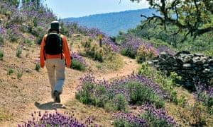 Trekking in Monfragüe, Extremadura, Spain
