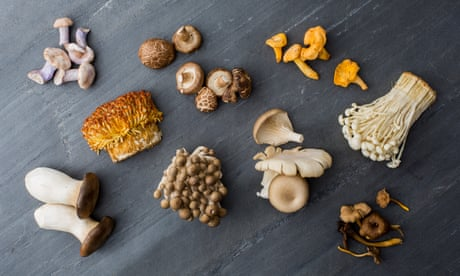 Cup runneth over: 17 ways to cook mushrooms – from spiced rice to pasta with prosciutto