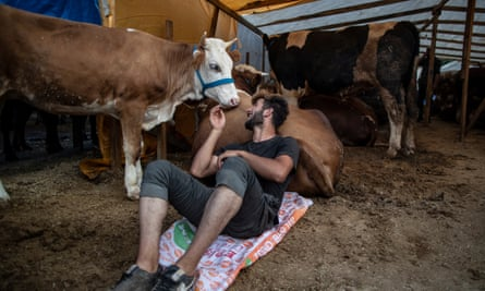 A livestock vendor sits with sacrificial animals ahead of Eid-al-Adha celebrations in Istanbul, Turkey, 27 July 2020.