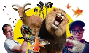 movie animal trainers