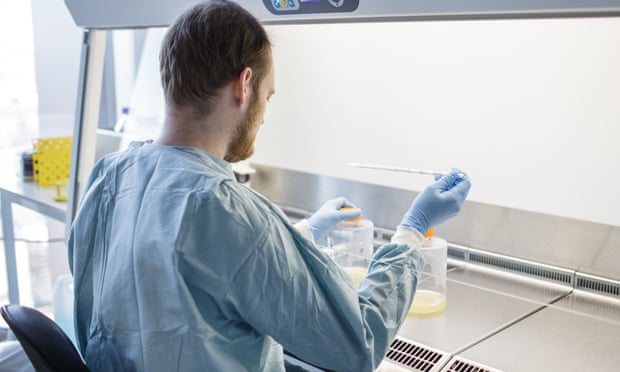 A researcher works on a potential Covid-19 vaccine at Copenhagen University
