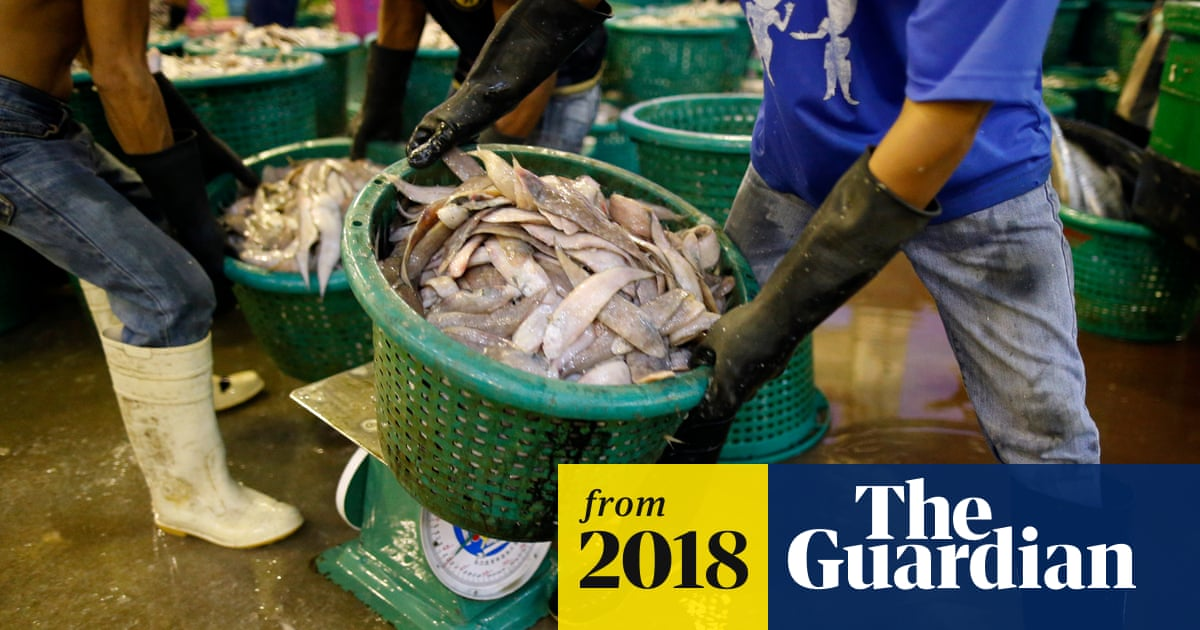 Thai seafood: are the prawns on your plate still fished by