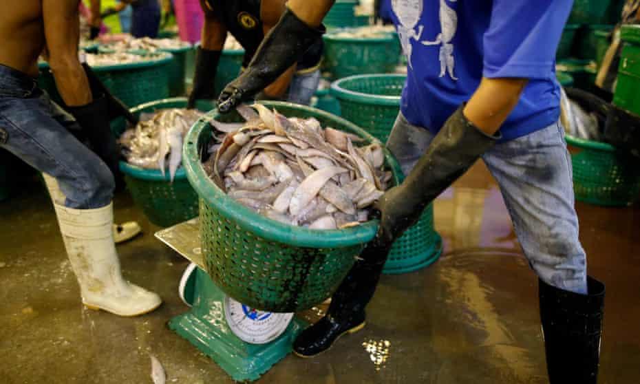 Worker carries basket of seafood