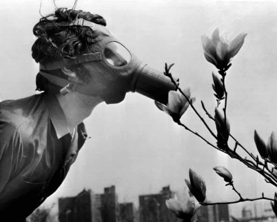 """In this photograph taken on the first Earth Day on 22 April , 1970, a Pace College student in a gas mask """"smells"""" a magnolia blossom in City Hall Park in New York."""