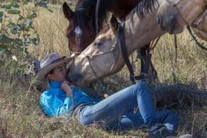 Cooper the horse getting close during a break.
