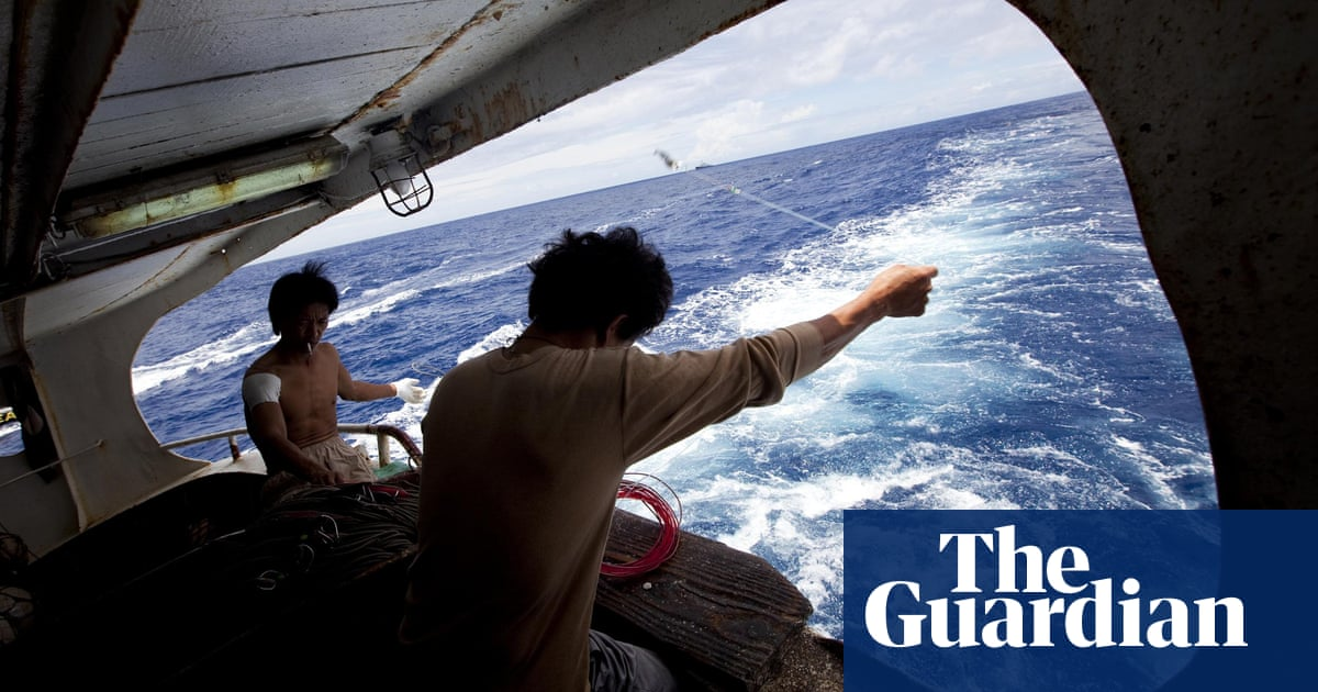 Disappearances, danger and death: what is happening to fishery observers?