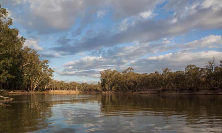 Murray River near the Lagoon.