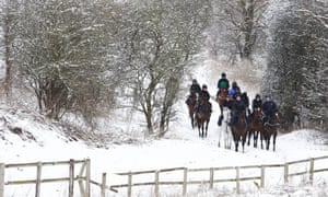 Brian Ellison's string on its way to the gallops in North Yorkshire this week.