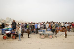 Horses and carts take the fish to market