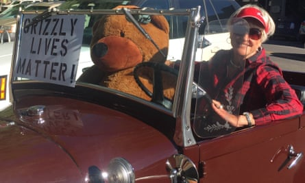 Activist Ann Smith in her antique truck supporting Grizzly Lives Matter.