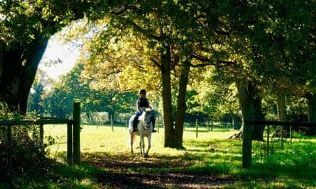 Burley Villa brush 'n' ride experience, Hampshire