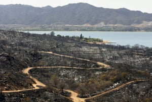 Charred trees show the extent of the damage caused by the fires