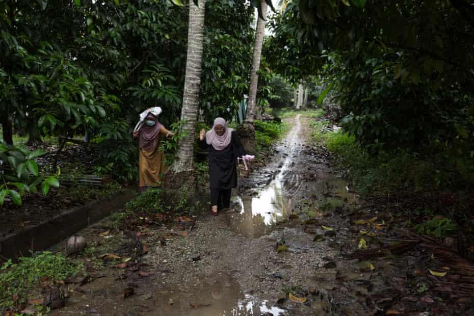 Two women in headscarves walk along a path in a jungle