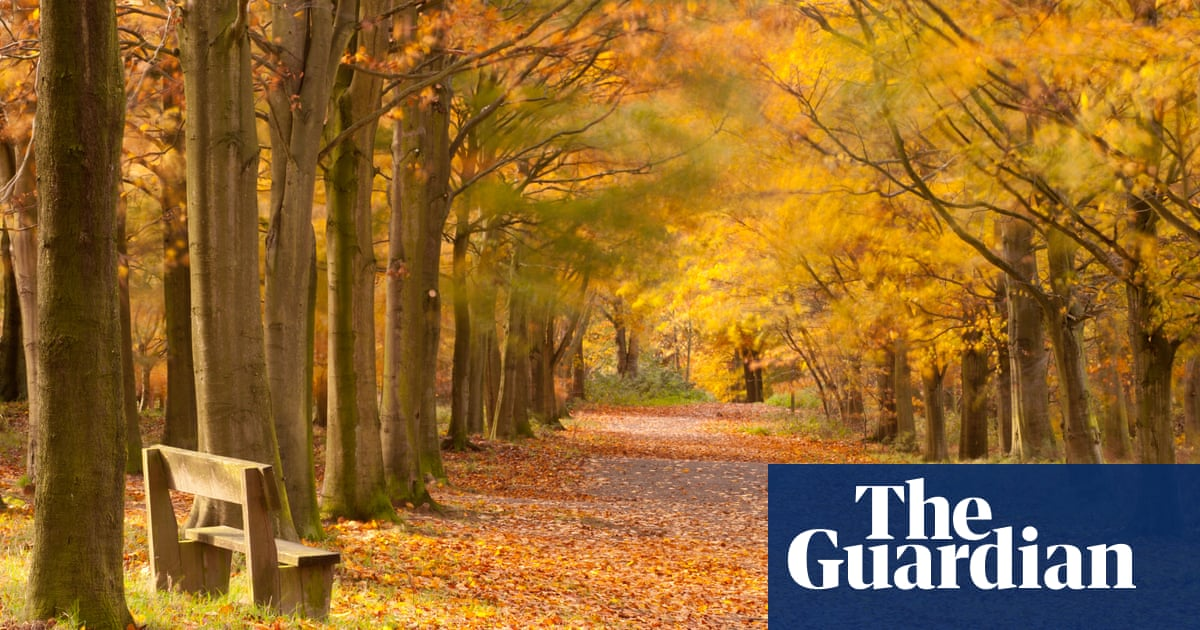 how do i spend christmas alone here are 10 ways uk news the guardian