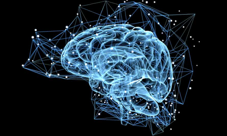Neurons are required for learning and memory processes, and it was previously thought humans stopped producing them in their late teens.