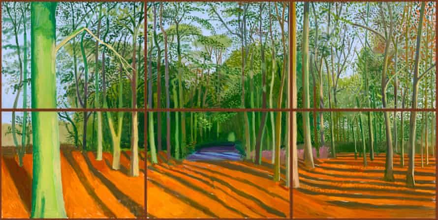 Woldgate Woods, 6 & 9 November 2006.