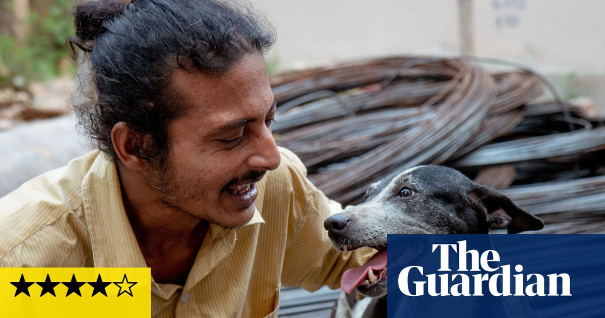 Pariah Dog review – lyrical portrait of Kolkata's canine carers