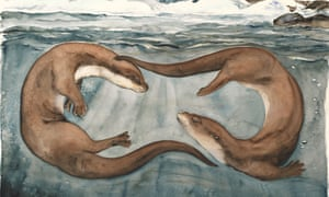 Otters from the 'beautiful' The Lost Words