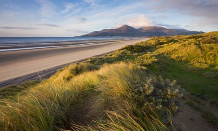 paths over the Murlough nature reserve, by Dundrum Bay