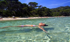 Pine-backed beach on Porquerolles, France.