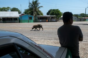 A local taxi driver waits to deliver migrants to a safe house in Palenque.