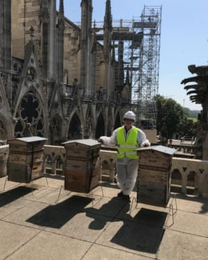 Moulin with the unharmed beehives on the sacristry roof three months after the fire.
