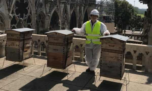 Sybile Moulin with Notre Dame's beehives, three months after the fire.