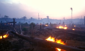 A burning forest at dusk in Brazil. Deforestation has risen continuously since 2012, the INPE says.