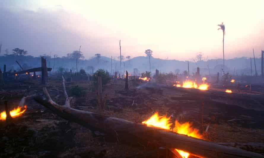 Fires in the Amazon region