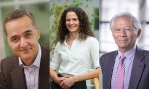 Nader Tavassoli, Tara Reid, George Yip