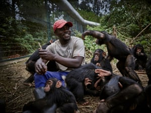 Caretaker Ephraim Ngiribwa tends to baby orphaned chimpanzees