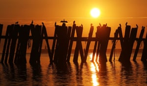 Cormorants are silhouetted on a pier at North Shields Fish Quay at sunrise