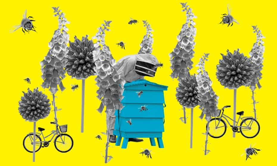 Composite image of bees, a beehive, flowers and bicycles