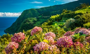 Beautiful view over green hills, meadows and mountains of São Miguel island.