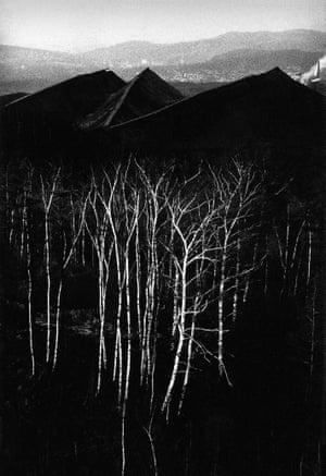 Slagheaps and trees, Wałbrzych, 1978