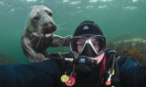 Signed, sealed and delivered: Alex Mustard with a young friend who is a seal in the North Sea.