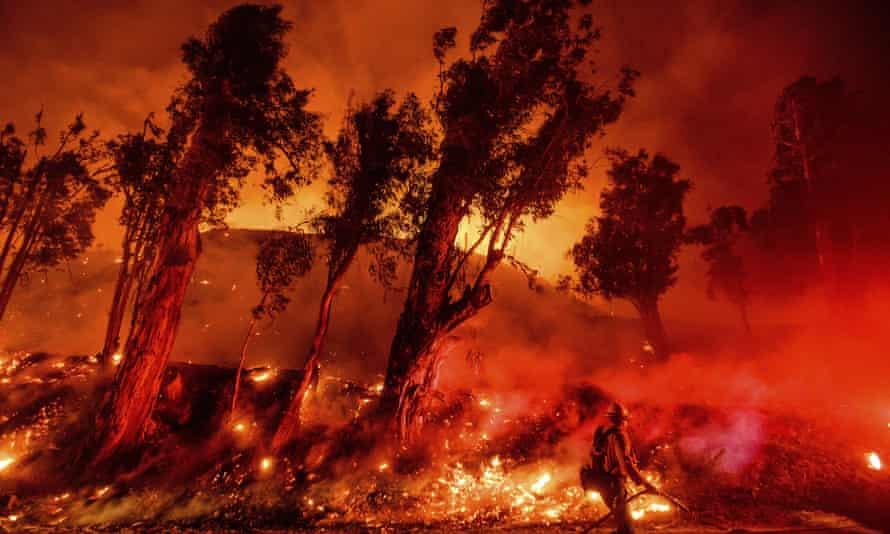 Firefighters battle the Maria Fire in Santa Paula, California, on 1 November 2019.