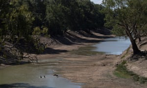 Scientists warn billions has been spent on the Murray-Darling Basin without any guarantee more water is actually reaching the environment