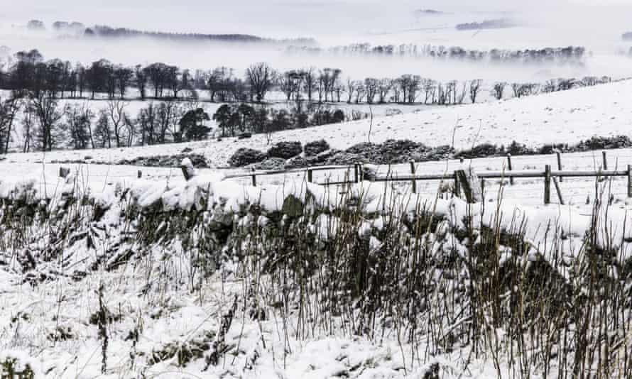 Snow and fog blanket the Scottish Borders