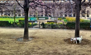 Until recently, dogs were allowed in just 16% of parks, gardens and squares in Paris.