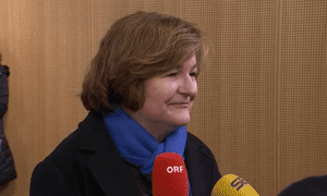 Nathalie Loiseau, the French Europe minister.