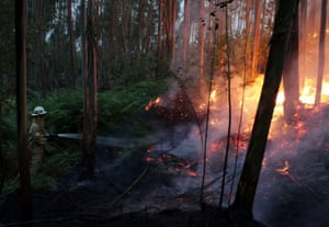 Firefighters of the Portuguese National Republican Guard work to stop a forest fire from reaching the village of Avelar at sunrise Sunday