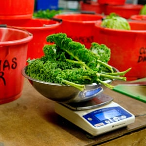 Weighing the vegetables