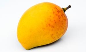An Alphonso mango