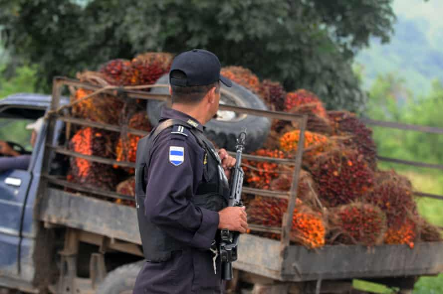 A policeman stands guard in a plantation of the Bajo Aguán valley, 600km north-east of Tegucigalpa, 2011.